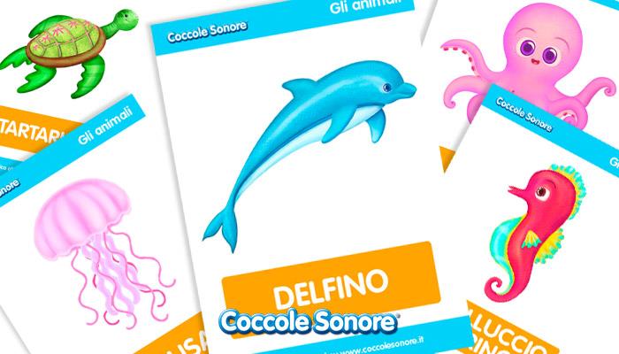 schede didattiche animali del mare, Coccole Sonore