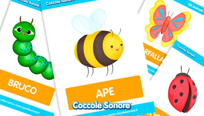 schede didattiche insetti, Coccole Sonore
