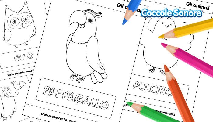 Uccelli_da_colorare_Didattica_schede_didattiche_cover