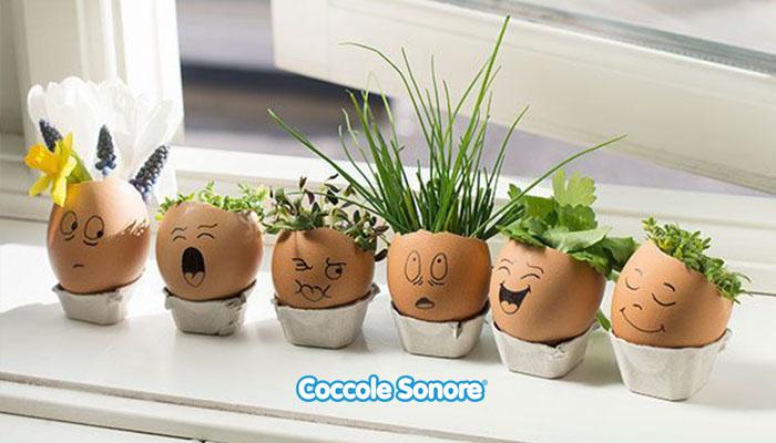 giardino uova piantare piantine dentro le uova
