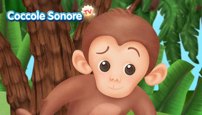 Primo piano di scimmia, Coccole Sonore